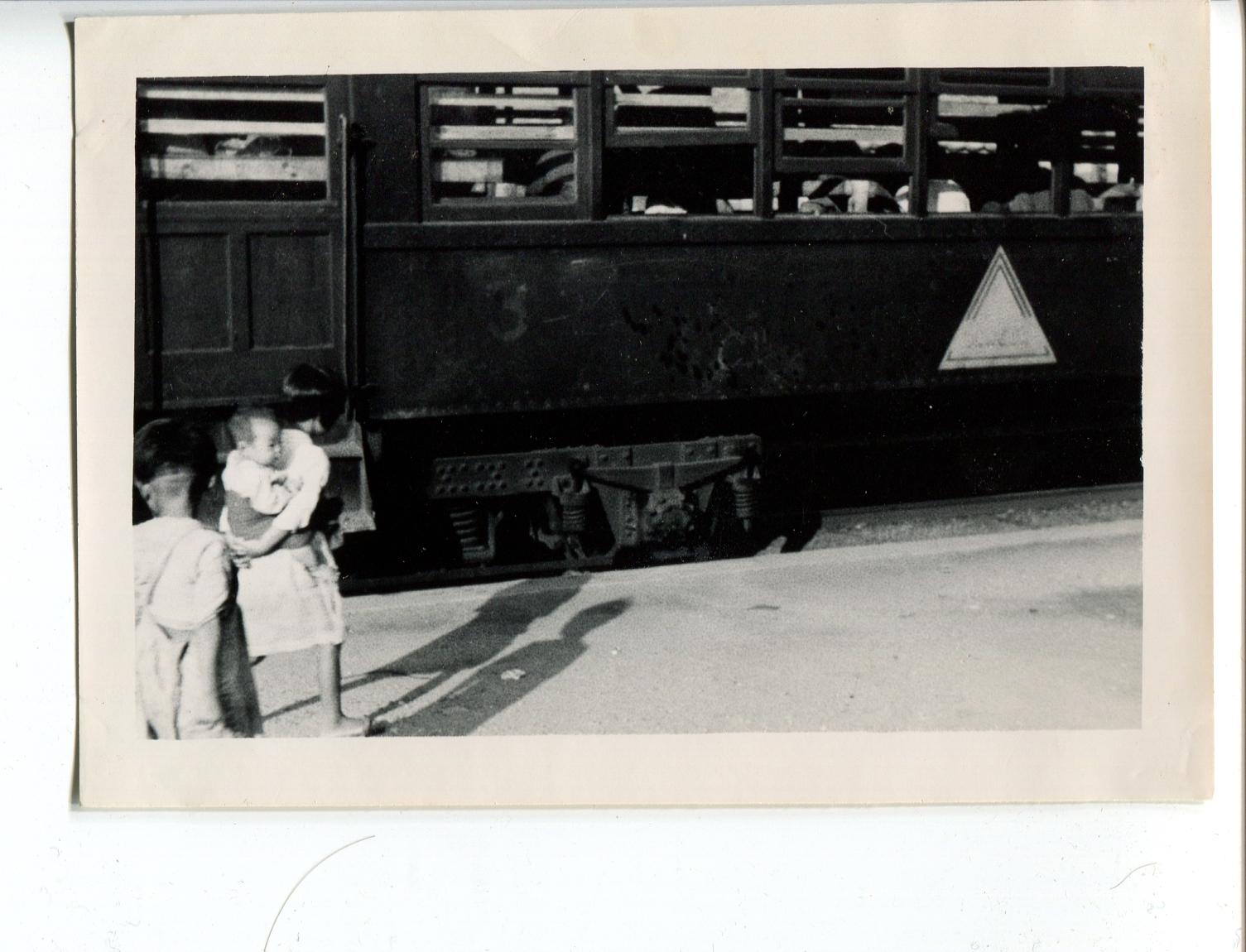 kron176