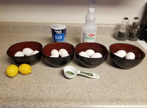 A Hard-Boiled Egg-speriment