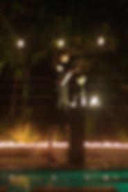 backyard-vertical2.9crop.jpg