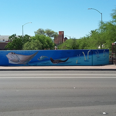 ASDM's Stingray Touch Mural