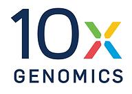 10x_Logo.png