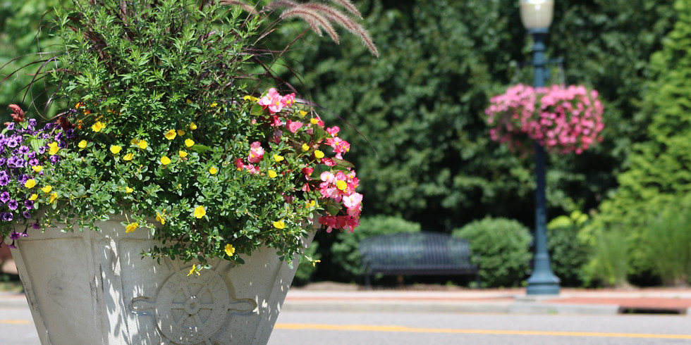 Bayport Blue Point Chamber of Commerce Beautification Project