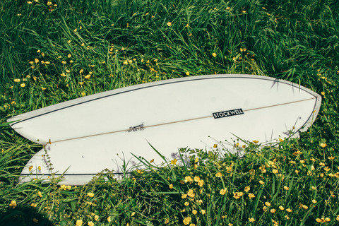 Fish Surfboard inthe grass