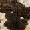 Thumbnail: MARBLE Wild Felted Living Wool Sheeprug