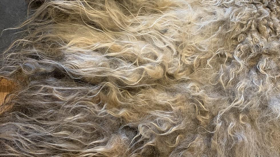 AURORA Wild Wool Rug