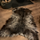 Thumbnail: HEARTH Wild Felted Living Wool Rug