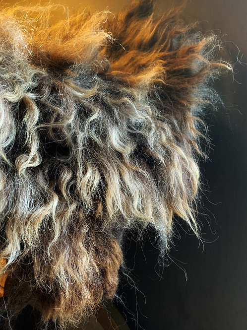 SLATE Wild Felted Living Wool Sheep Rug