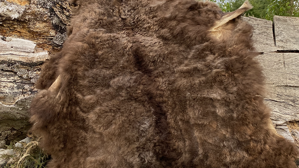 WILD SOPHIE - Wild Tanned Organic Heritage Breed Sheepskin
