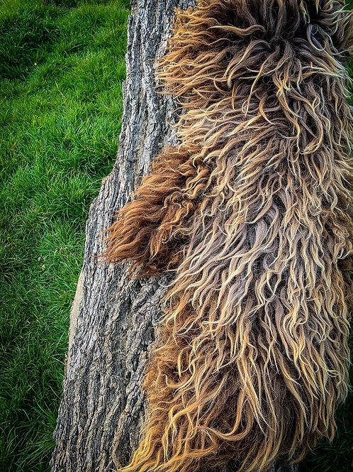 Primitive Breed Organic Hand Tanned Sheepskin