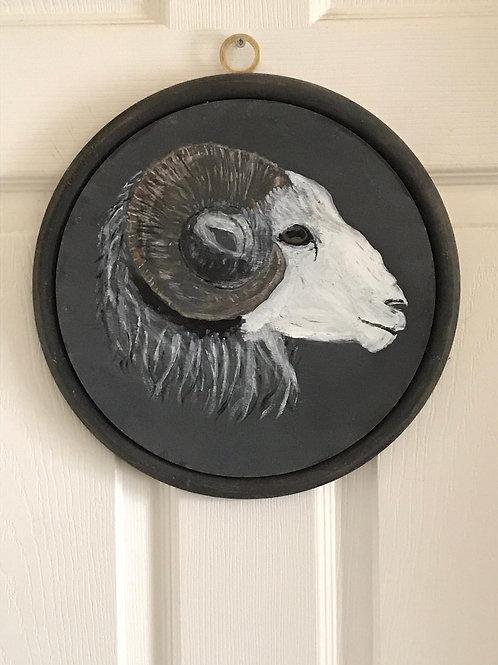Herdwick Ram Oil Painting.
