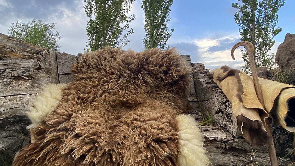 ROHAN -Wild Tanned Organic Heritage Breed Sheepskin