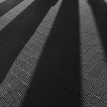 Shadow, Ostende, 2018