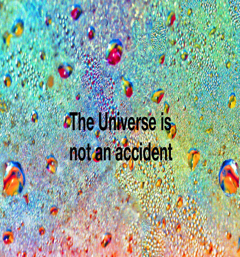 Not An Accident.jpg