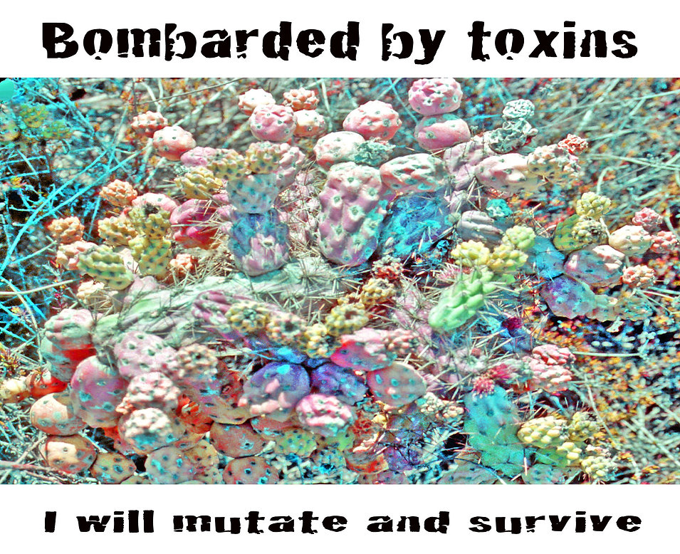 Bombarded by Toxins.jpg