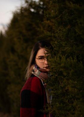 Among the Pines