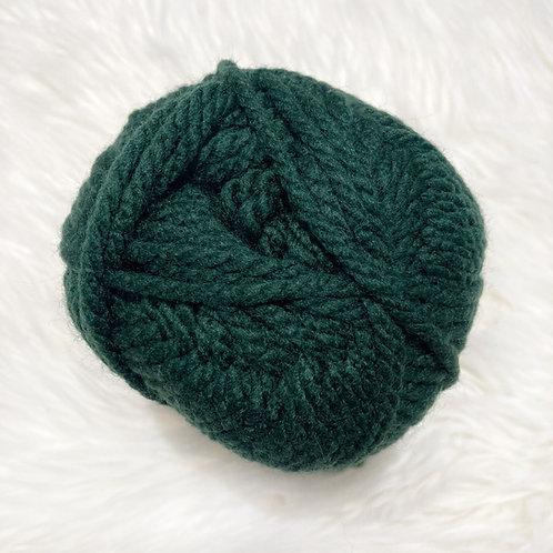 Dark Green - Bernat Softee Chunky