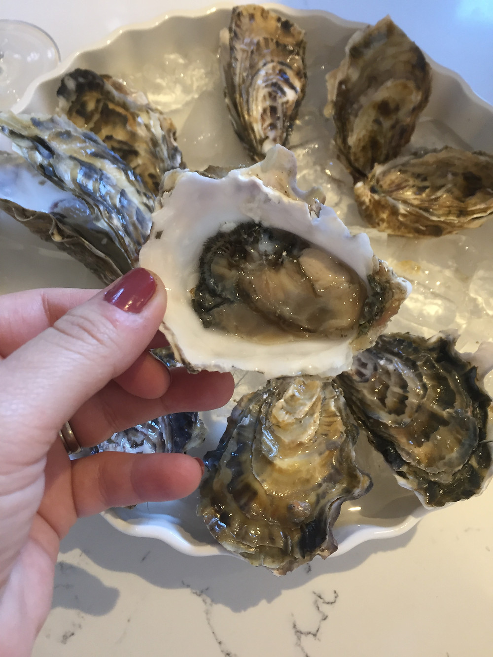 Shucked Oyster. Ready to be eaten