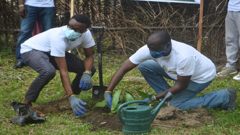 Dawn Project volunters at the tree planting event