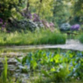 Park Seleger Moor © Dennis Yulov