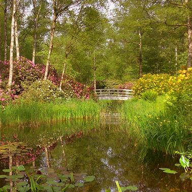 Park Seleger Moor © Dominik Fischer
