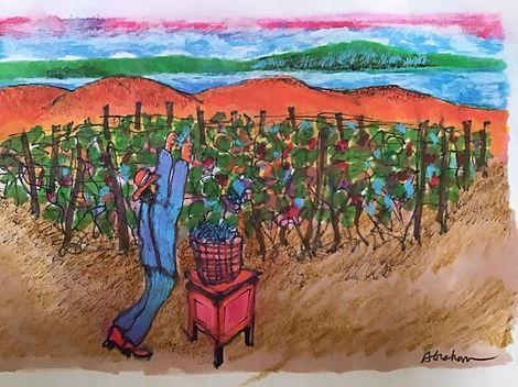 Abraham Grape Harvest 3.jpg
