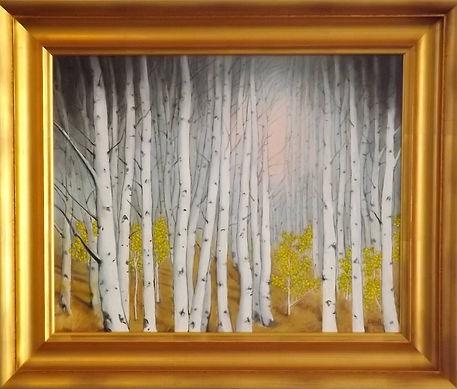 Alliet birches in the sun.jpg