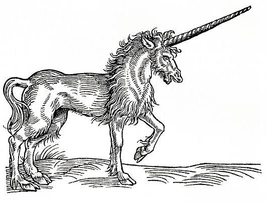 unicorn bw.jpg