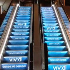 VIV'd