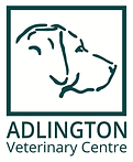 AVC logo with text - green-01.png
