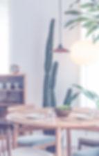 cactus coaching etude décoration intérieur