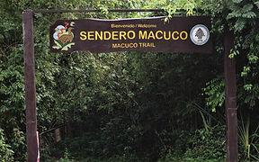 Trekking Sendero Macuco - Parque Naciona