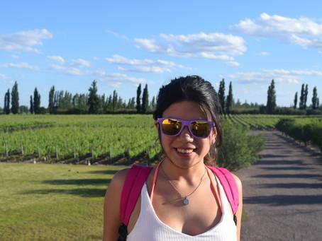 ¡Mendoza tierra de vinos!