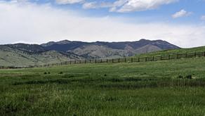 Boulder Weekly Letters: What Safer Boulder wants