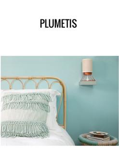 Plumetis _ France
