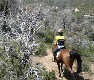 San Diego Horse Trails