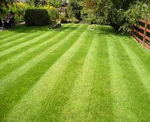 Hisey Company Lawn Care