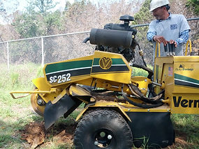 Bee Cave Tree Service Hisey Company Stump Grinding
