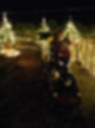 Santa Claus Zügle auf dem Landseehof