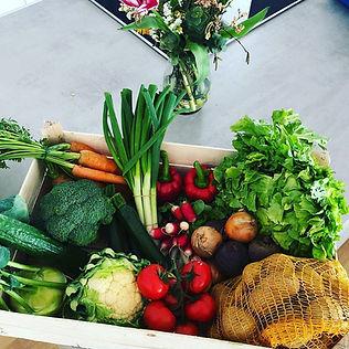 Gemüsekorb.jpg