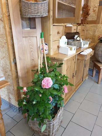 Landblüte im Landseehof