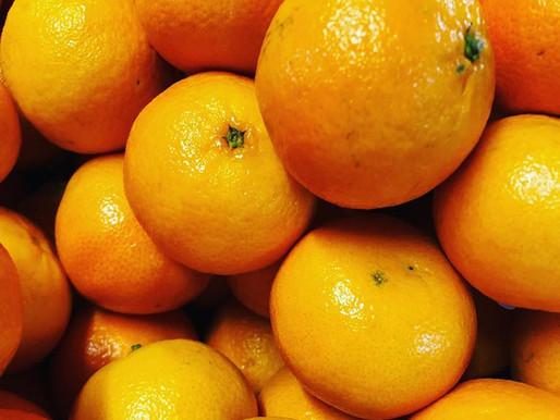 Orangen und Mandarinen - Vitamin C Powerpack!!!