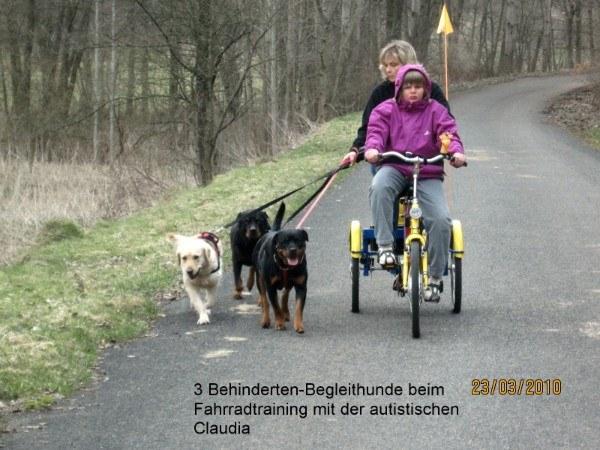 Hundeeinsatz zur Hilfe