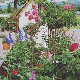Hofcafé Gugelhupf, Gartenterrasse