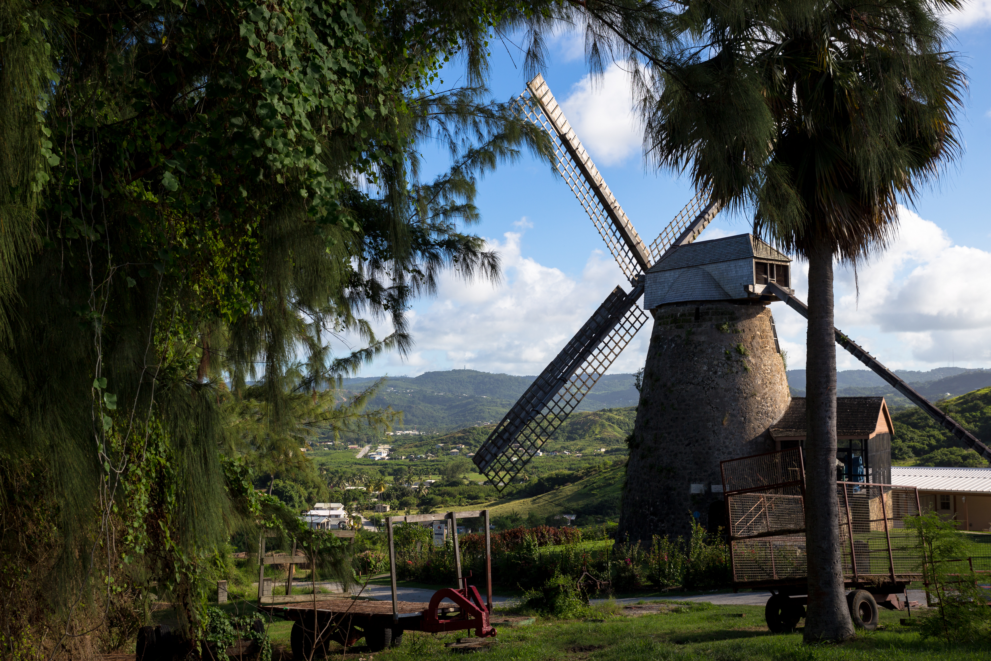 windmill in barbados
