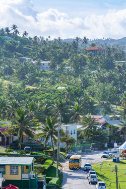 In the tropics
