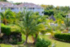 Apartment Gardens jpg.jpg