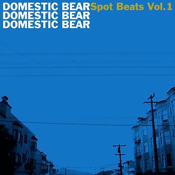 DB_Spot Beats Vol 1 COVER.jpg