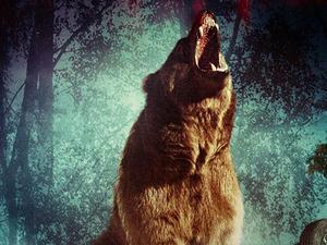 BEAR (Feature Film)