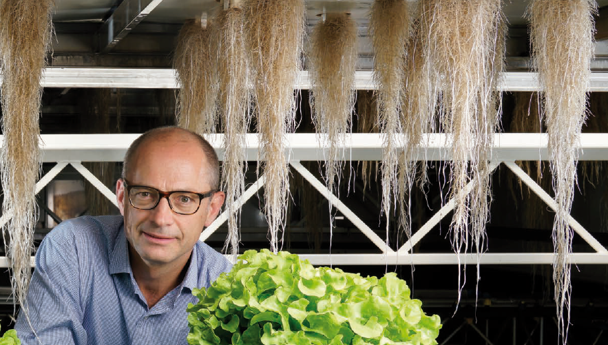 CombaGroup aeroponic