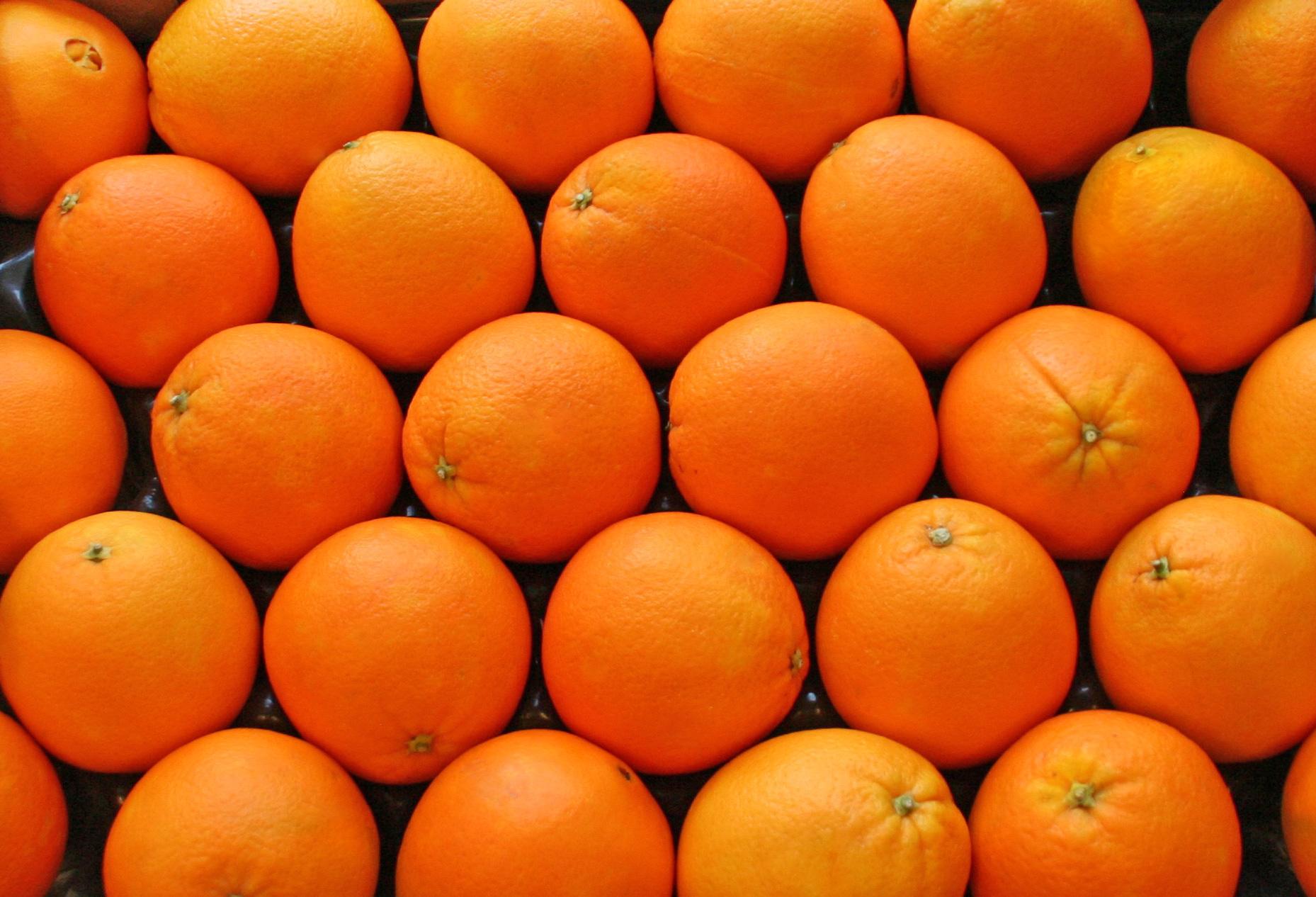 fd-orange